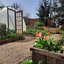 Spring 2021 in the Garden