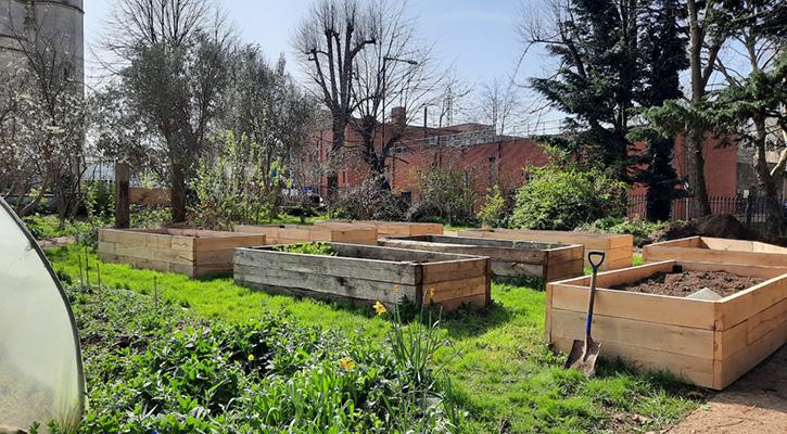 Trinity Community Garden