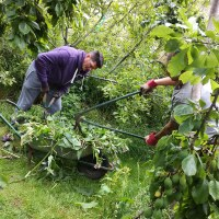 Trinity granted funding for garden improvements